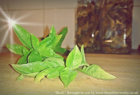 A few sprigs of basil beneath a wash of unnecessary photo filters